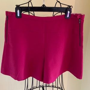 Bright Pink Anthropologie Wide Leg Shorts Sz 12